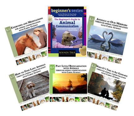 Animal Communication CDs