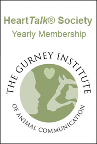 HeartTalk Society Membership